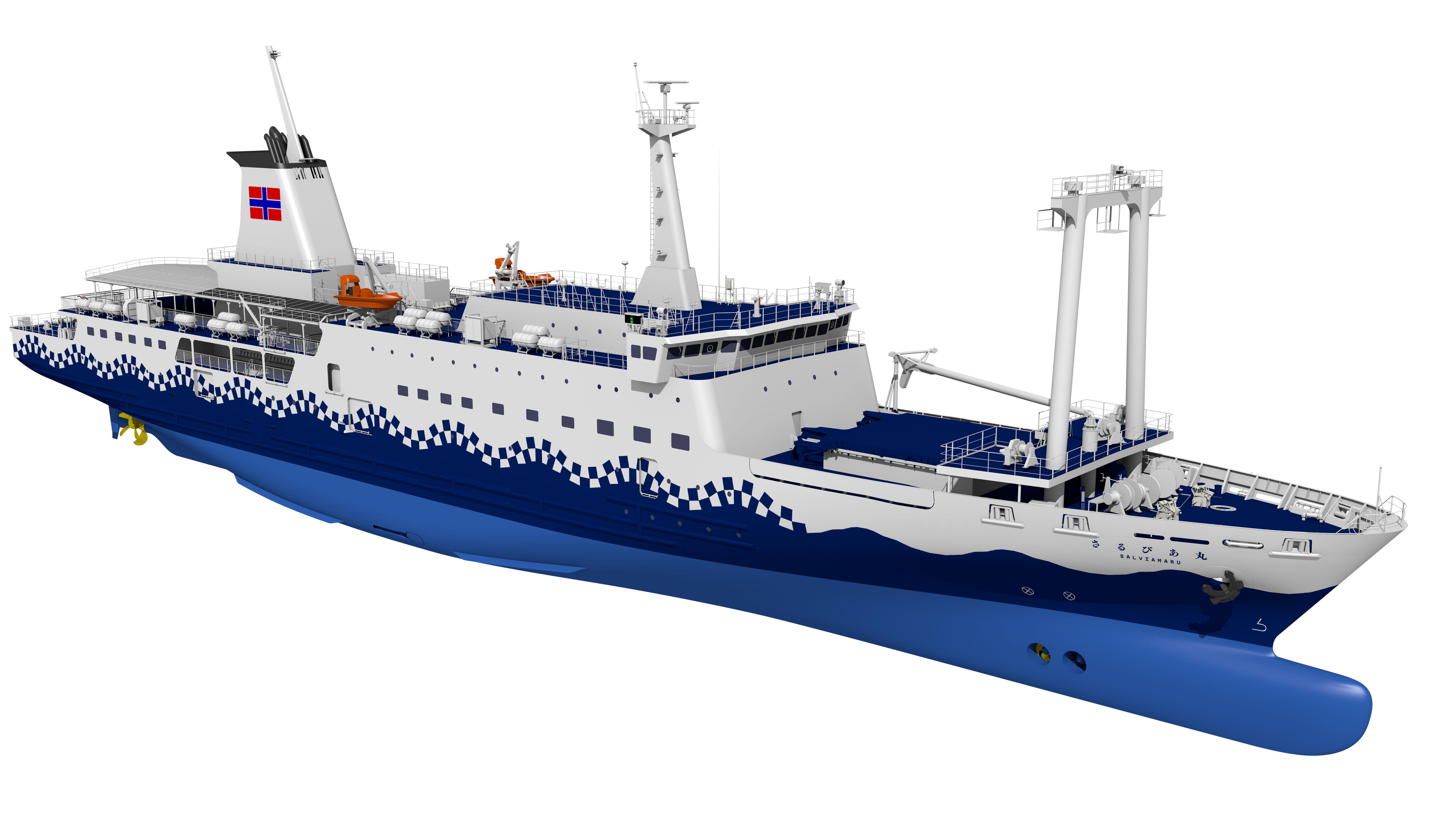 汽船 予想 東海 運航