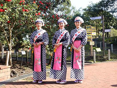https://www.tokaikisen.co.jp/tsubaki_festival/assets/img/oshima_img_3.jpg